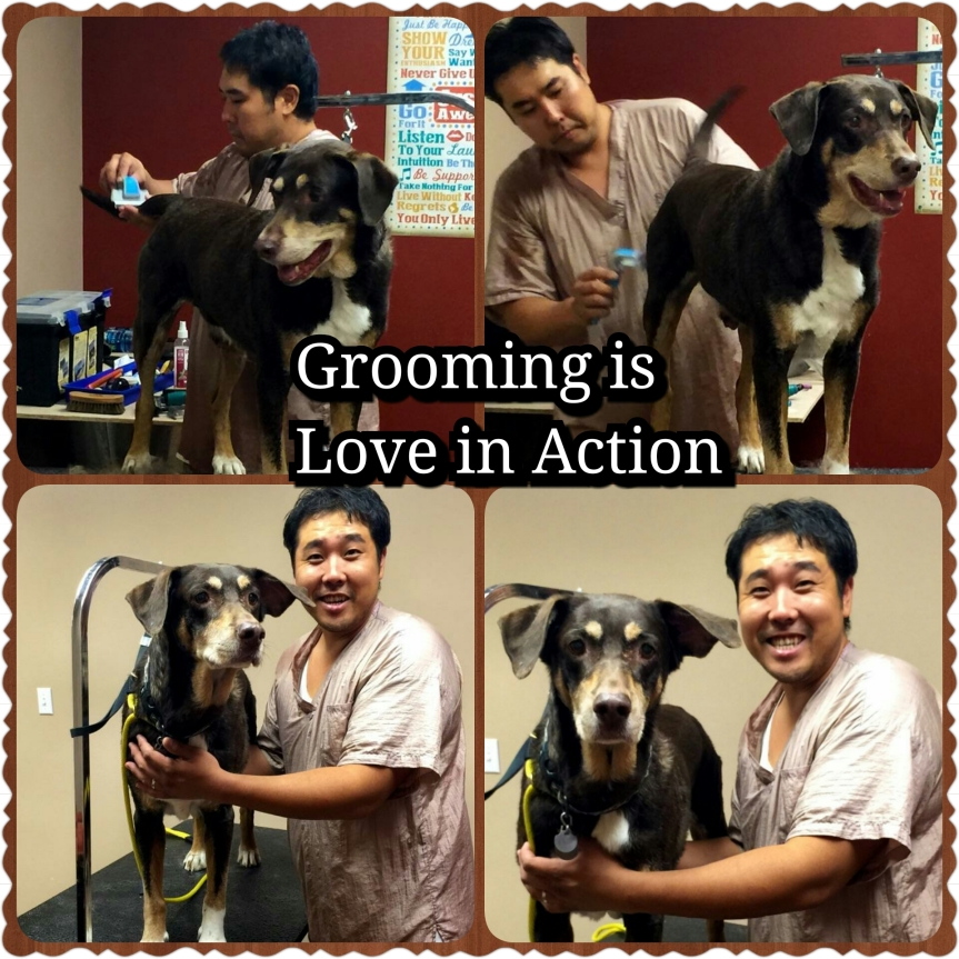 Grooming is a Necessity, notVanity