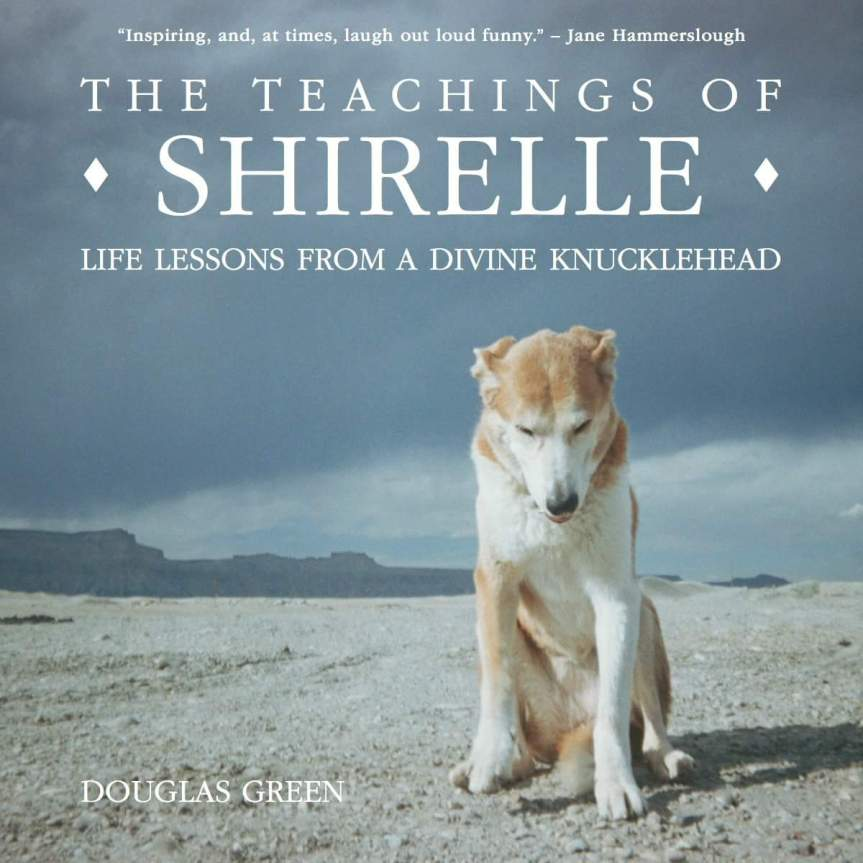 Lessons from Shirelle – Grooming Advice from a Divine Knucklehead :-)