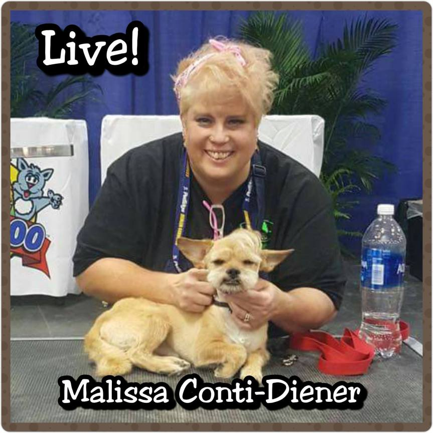 Malissa Conti-Diener's Q&A Highlights (AJG Live)